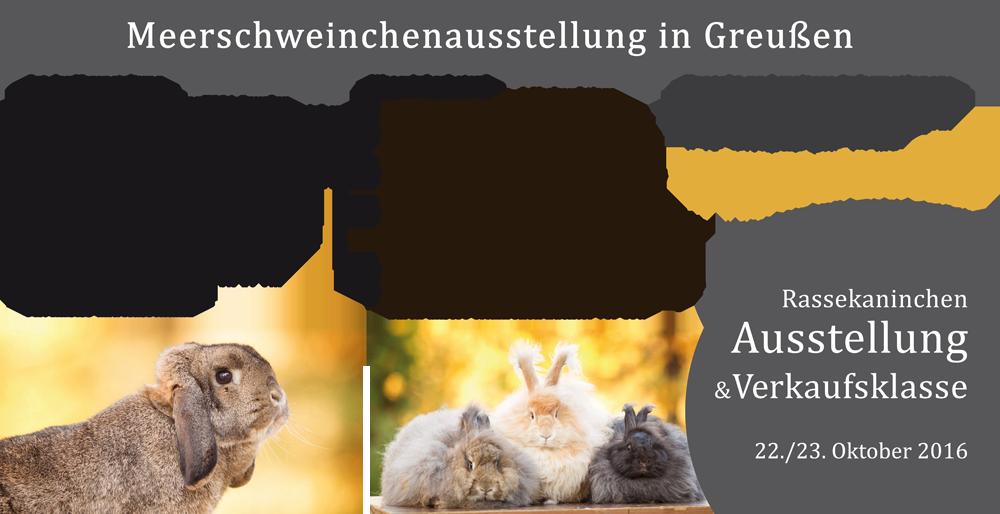 Ausstellungs-Infos