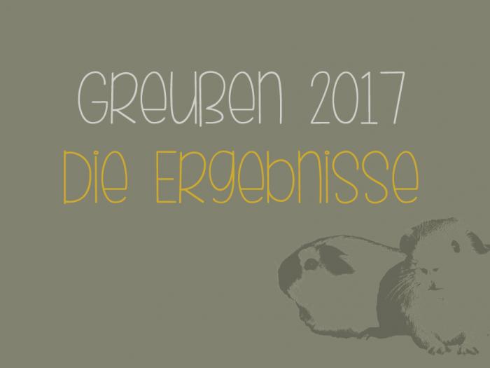 Ergebnisse Greußen 2017
