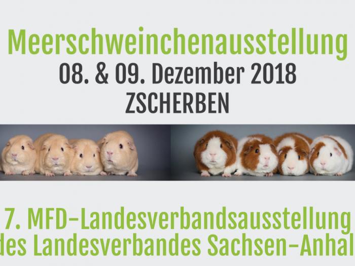 Zscherben 2018
