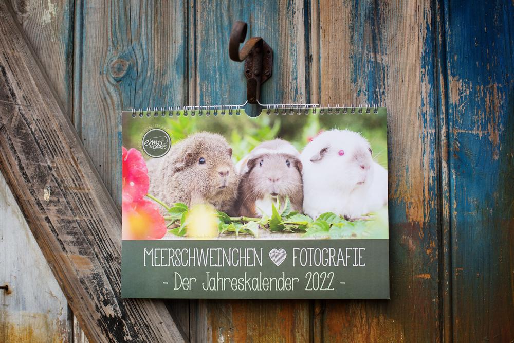 Meerschweinchkalender 2022, Meerschweinchenfotografie, Tierkalender 2022, Wandkalender