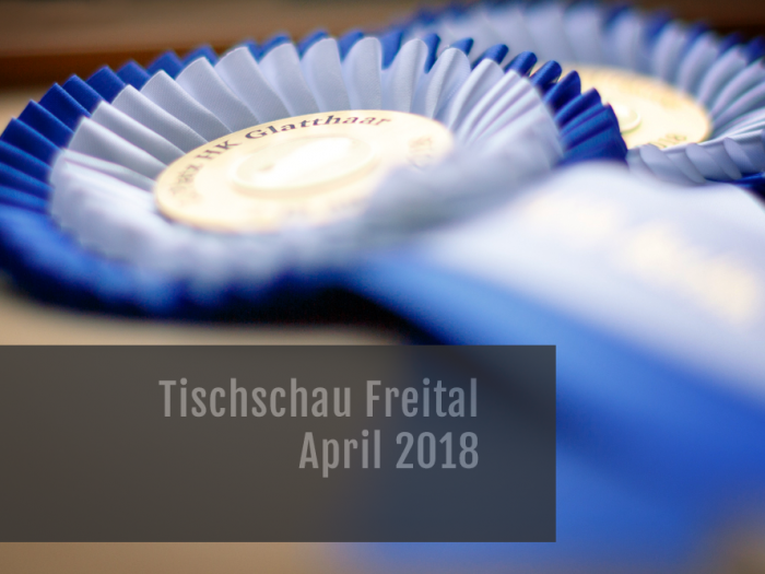 Tischschau Freital